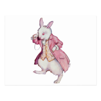 ALICE'S CHARMING WHITE RABBIT POSTCARD