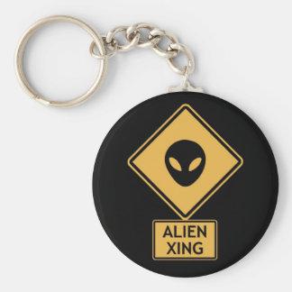 alien crossing keychain