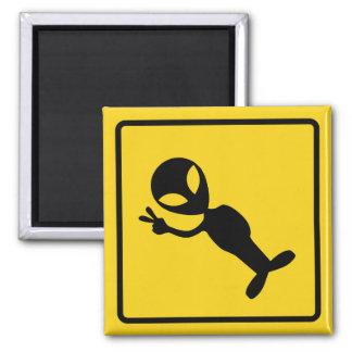 Alien Crossing Zone Magnet