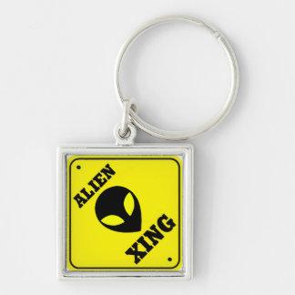 alien xing key chain