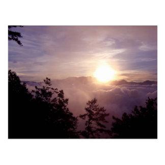 Alishan Sunrise Postcard