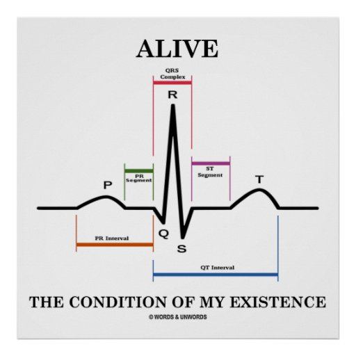 Alive The Condition Of My Existence (ECG/EKG) Posters