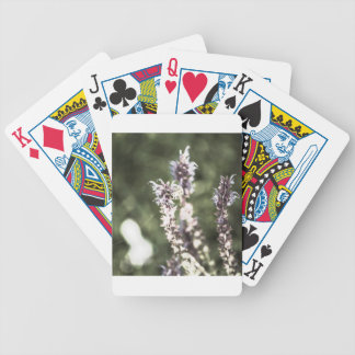 All About Pollen Bicycle Playing Cards