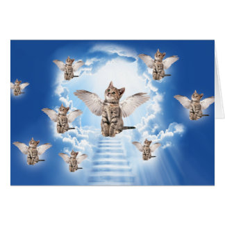 All Cats Go to Heaven Card