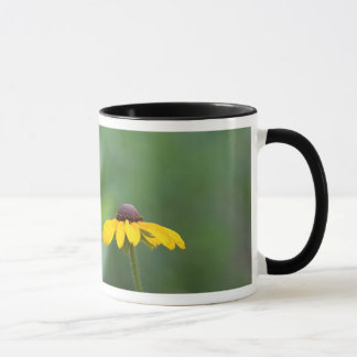 all clear mug