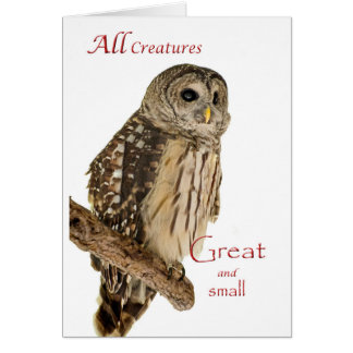 All Creatures Christmas Card