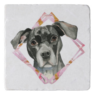 """All Ears"" 2 Pit Bull Dog Watercolor Painting Trivet"
