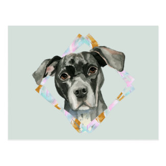 """All Ears"" Pit Bull Dog Watercolor Painting Postcard"