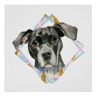 """""""All Ears"""" Pit Bull Dog Watercolor Painting Poster"""
