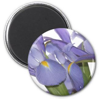 All Eyes on Iris magnet