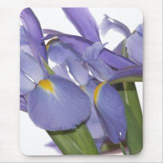 All Eyes on Iris mousepad