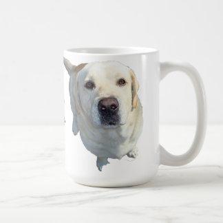 All food must go to the (yellow) Lab Coffee mug. Coffee Mug