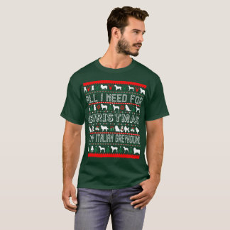 All I Need For Christmas Is My Italian Greyhound T-Shirt
