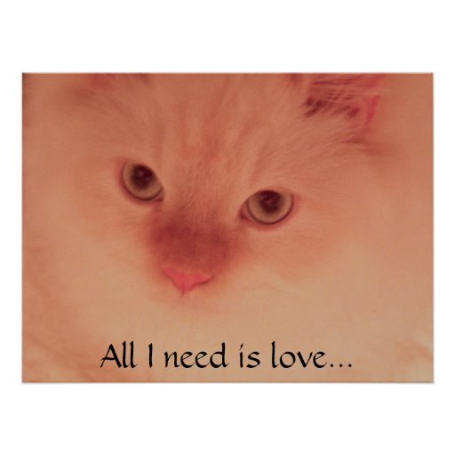 All I need is love... Poster