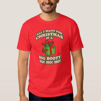 all i want for christmas is a big booty hoe, unny, shirts