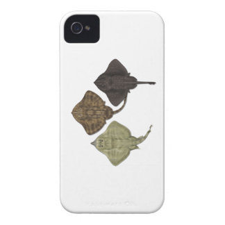 ALL IN FORMATION iPhone 4 Case-Mate CASES