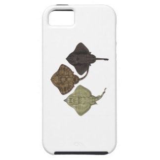 ALL IN FORMATION iPhone 5 CASES
