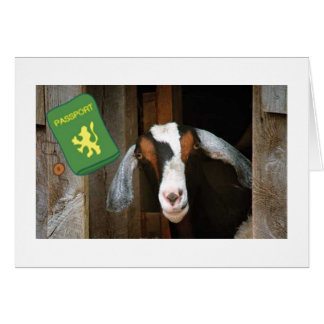 "ALL ""KIDDING"" ASIDE **ENJOY YOUR TRIP**SAYS GOAT CARD"