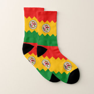 All Over Print Socks with Flag of Los Angeles 1