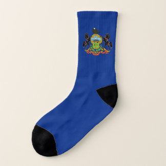All Over Print Socks with Flag of Pennsylvania 1