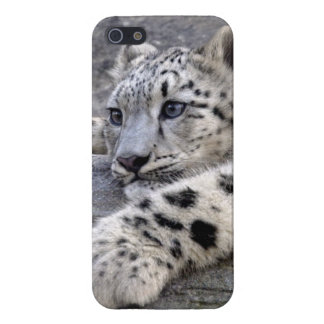 All Played Out iPhone 5 Savvy Case