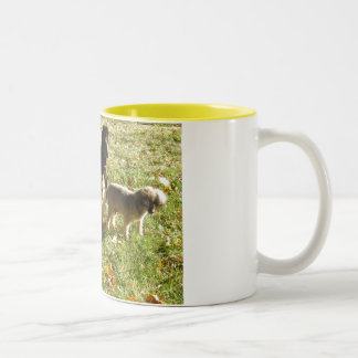 All the dogs Sept 2006 001 Two-Tone Coffee Mug