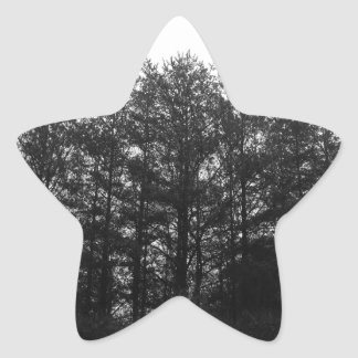 All the Numbness of a Perpetual Winter Star Sticker