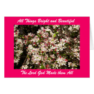 All Things Bright and Beautifu... Card
