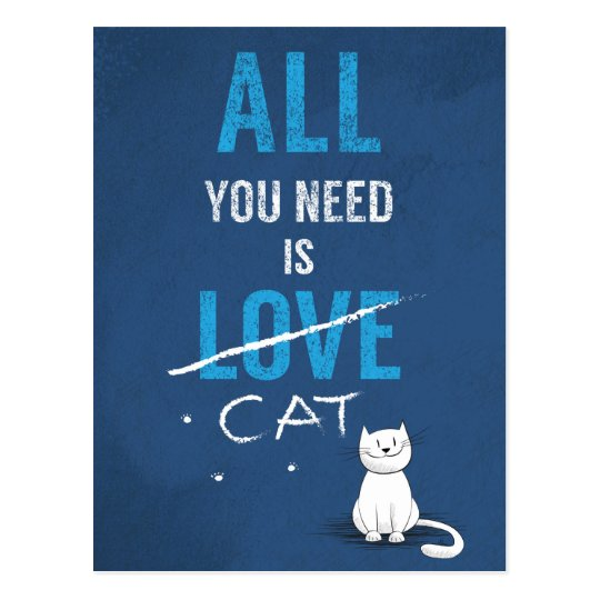 All you need is a cat :) postcard