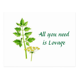 All you need is Lovage Postcard