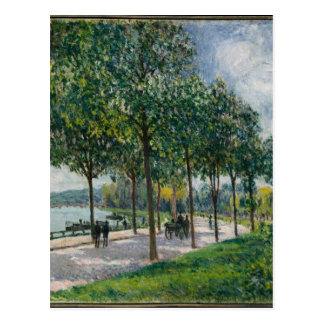 Allée of Chestnut Trees - Alfred Sisley Postcard