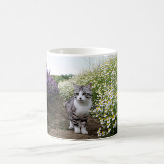 Alley cat niyan good fortune< Duck meal > Coffee Mug