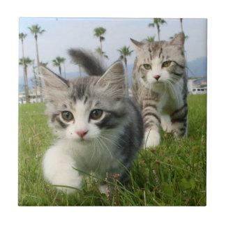 Alley cat niyan good fortune< niya Taro and Ceramic Tile
