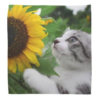 Alley cat niyan good fortune< Sunflower > Bandana