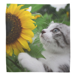Alley cat niyan good fortune< Sunflower > Bandannas