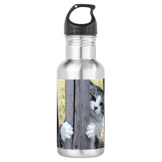 Alley cat niyan good fortune< While fleeing > 532 Ml Water Bottle