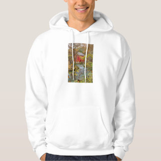 Alley Through The Woods Hoodie