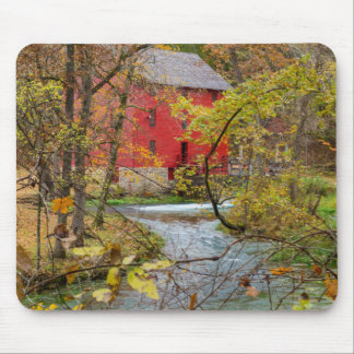 Alley Through The Woods Mouse Pad