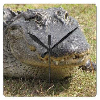 Alligator Clock