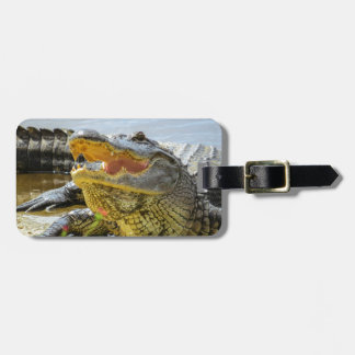 Alligator. Face to face Luggage Tag