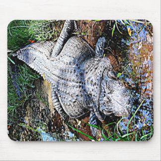 Alligator (Florida, Louisiana and Mississippi) Mouse Pad