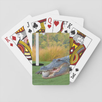 Alligator, Hazardous Lie in Golf Playing Cards