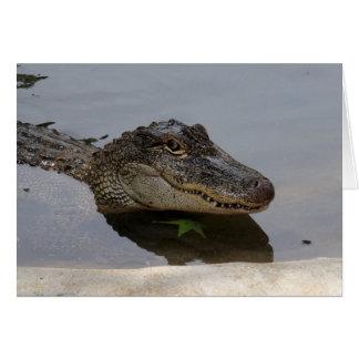 Alligator Note Card
