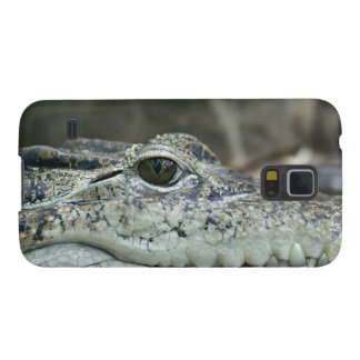 Alligator Photo Galaxy S5 Covers