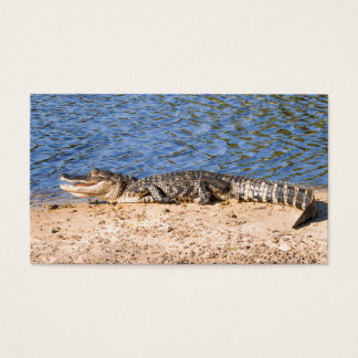Alligator sunning at the lake business card