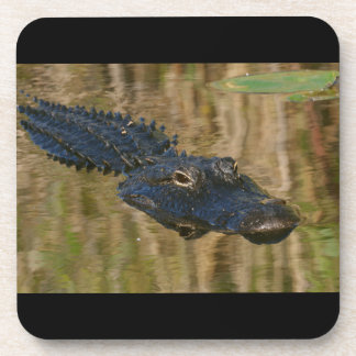 Alligator Swimming Drink Coaster
