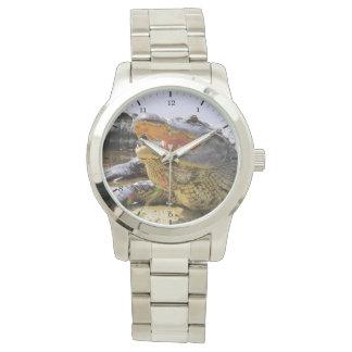 Alligator Watch