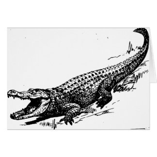 alligators-37912 card