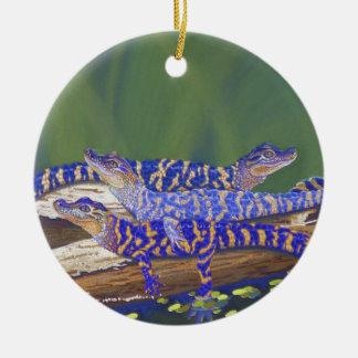 alligators ceramic ornament