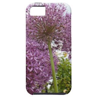 Allium Flower iPhone 5 Cover